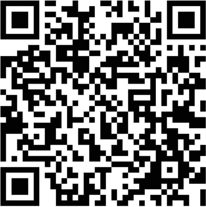 CISB chairty auction QR